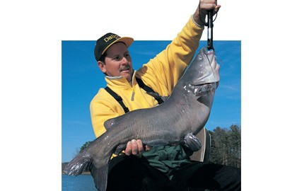 There are as many catfish bait options as there are catfishermen. Don Wirth sat with three