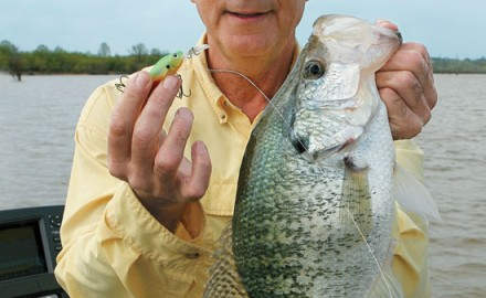 Pockets of popularity you might say. Everyone knows crappies eat crankbaits—at times. That's not