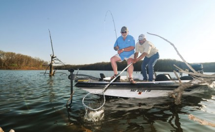 Missouri's Stockton Lake has water clear enough for anglers to resort to light line and light