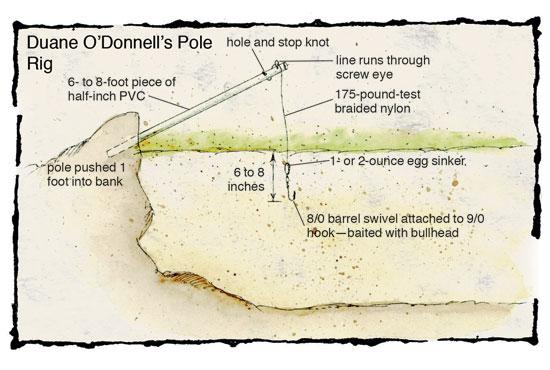 Catfish Pole Rigs