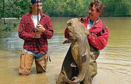 Flathead-Catfish-Today-Feature-In-Fisherman