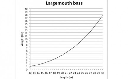 pike length to weight conversion chart infisherman