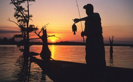 Sunset-Bluegill-Silhouette-In-Fisherman