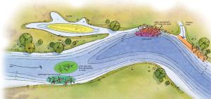 Blue-Catfish-River-Bend-Illustration-In-Fisherman