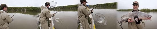 Spinning Reels For Catfishing