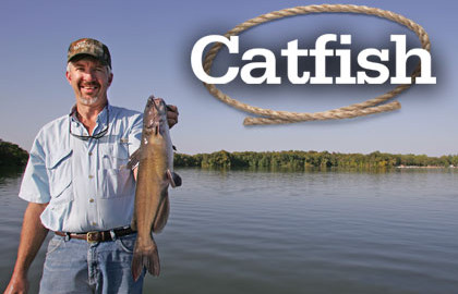 Cowpuncher-Catfish-Feature-In-Fisherman