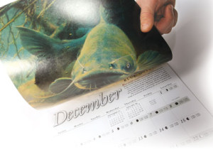 December-Blue-Catfish-Feature-In-Fisherman