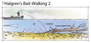 Once it's in position, walk the bait upstream along the tree or back from the rootball, using lift-drops until the bait reaches the boat.