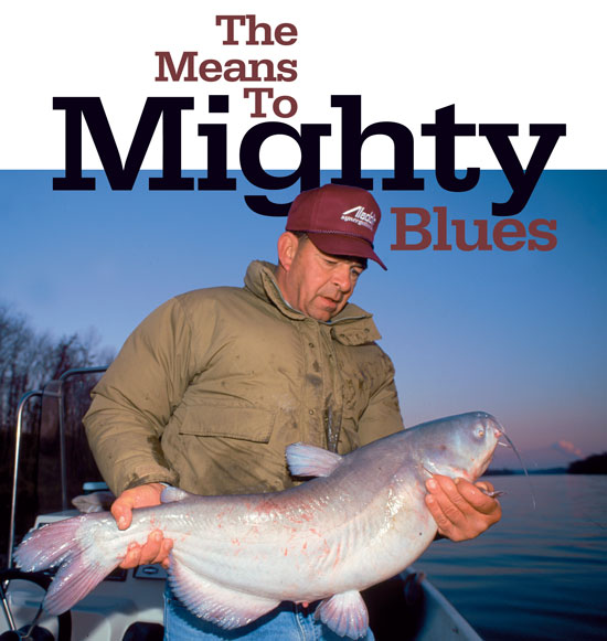 The means to mighty river blue catfish in fisherman for What does cat fishing mean