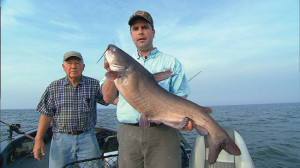 Open-Water-Catfish-Hold-In-Fisherman