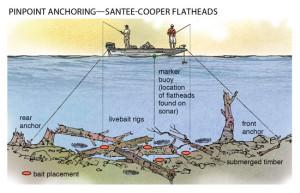 Pinpoint-Anchoring-Santee-Cooper-Flatheads-In-Fisherman