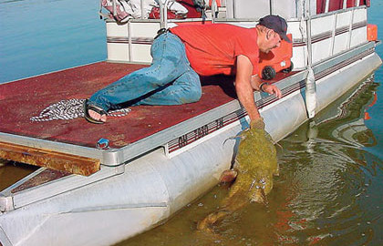 Resolute-for-Reservoir-Flatheads-Feature-In-Fisherman