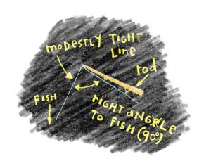 Rod-Angle-Blackboard-Illustration-In-Fisherman