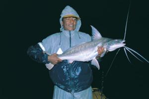 South-American-Catfish-Lead-In-Fisherman