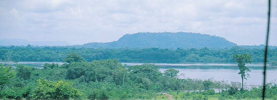 South-American-Landscape-In-Fisherman