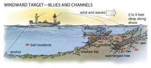 Blues and channels are shallow along windward shorelines, especially around driftwood, woodpiles, and beached trees in 2 to 5 feet of water.