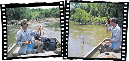 Top Spots For Channel Catfish