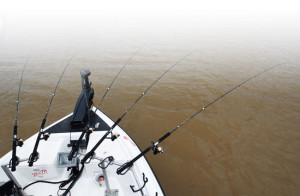 A foot-controlled trolling motor leaves both hands free to man the rods. Good pole holders are critical to an efficient spider-rigging system.