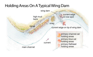 Holding-Areas-On-A-Typical-Wing-Dam-In-Fisherman