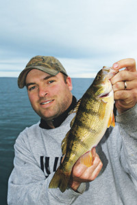 Open-Water-Perch-Overcast-In-Fisherman