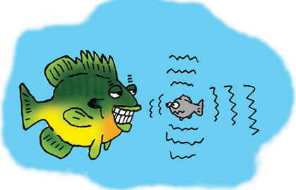 Illustrations: Peter Kohlsaat  One concept we have long used to get anglers to consider what