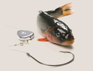 Steeles-Tackle-and-Bait-Solutions-In-Fisherman