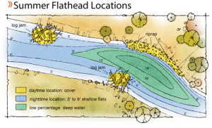 Summer-Flathead-Locations-In-Fisherman