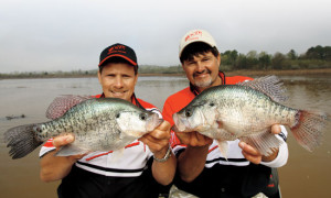 Tennessee pros Steve Coleman and Ronnie Capps rely on spider-rigging to catch crappies throughout the country.