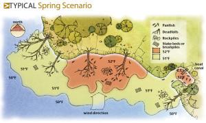 Typical-Spring-Scenario-Illustration-In-Fisherman