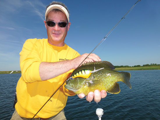 Fine tuning for trophy bluegills in fisherman for Bluegill fishing lures