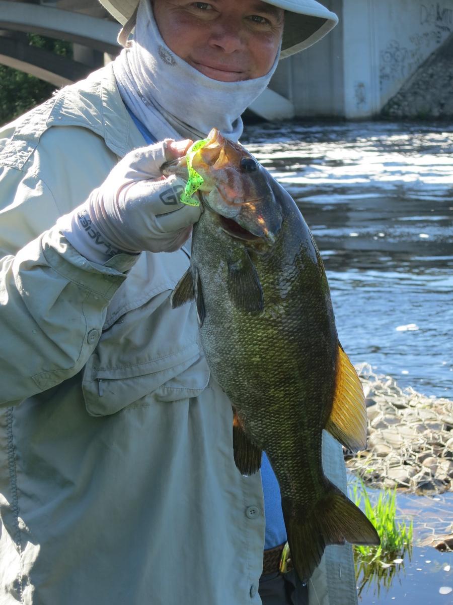 Freshwater fish lewisville tx - Freshwater Fish Lewisville Tx