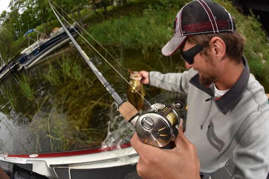 best baitcasting reel picks - in-fisherman, Fishing Reels