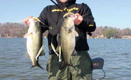 Experiment with lure position, size, and color to tune into bass preferences, which can vary among