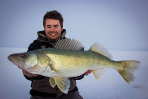 Guide Luke Fehr stays mobile to keep pace with walleyes roaming shallow water.