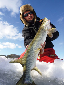 //www.in-fisherman.com/files/2014/10/New-Mexico-Hybrid-Muskies-In-Fisherman-225x300.jpg