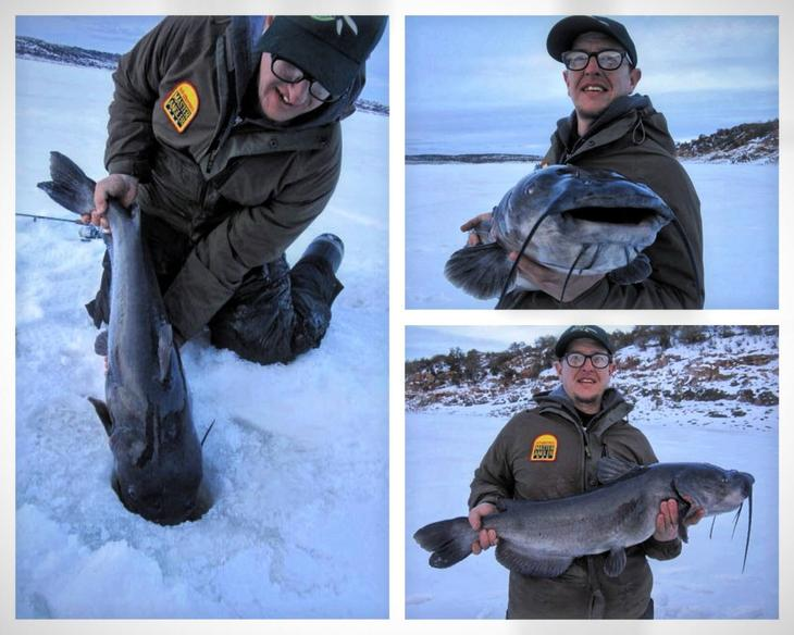 Channel catfish through the ice in fisherman for Ice fishing for catfish