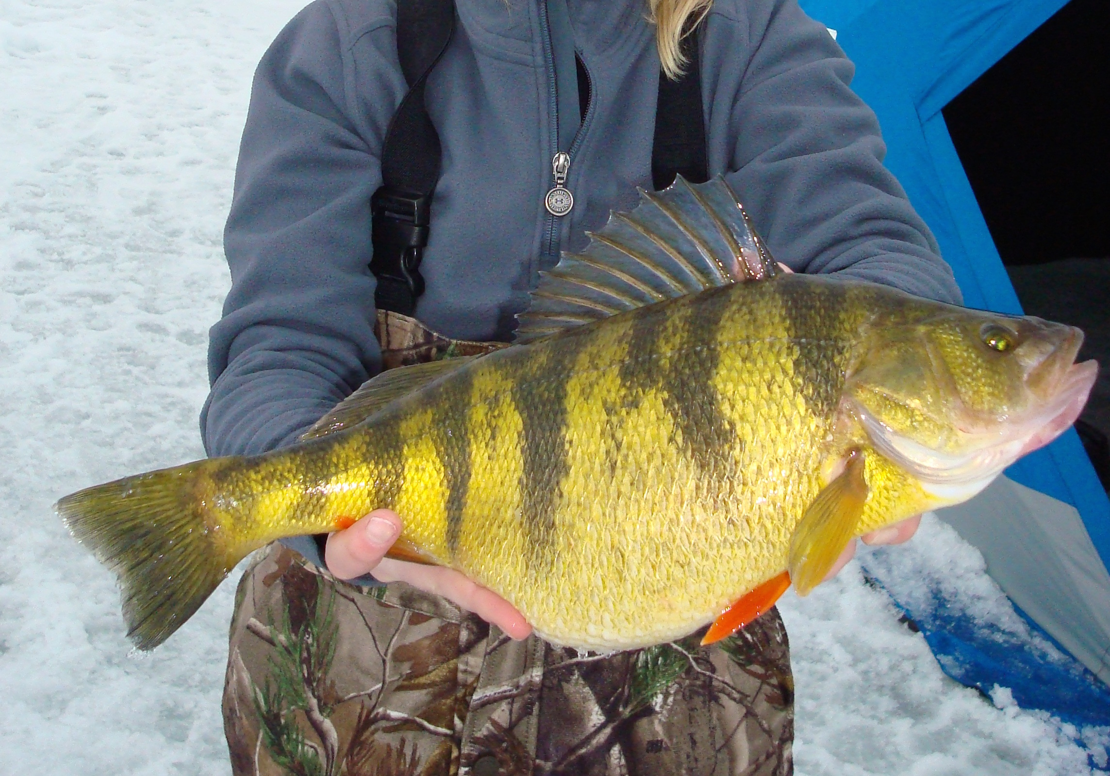 Idaho Girl Ices World Record Perch