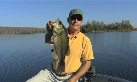 Doug Stange has helped popularize swimbaits for all fish spices, including largemouth bass.
