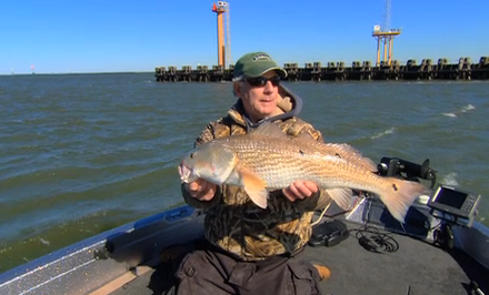 Redfish are one of the most popular fish to target on the inshore waters of North America.