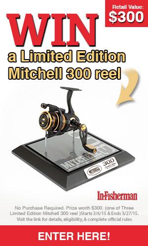 IF-mitchell-300x500