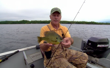 Check out this deadly spoon system for big bluegills introduced by one of In-Fisherman's readers.