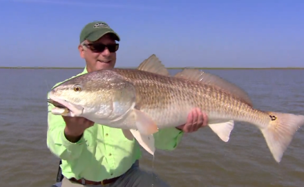 One of the most spectacular places for hot redfish action is Venice, Louisiana.
