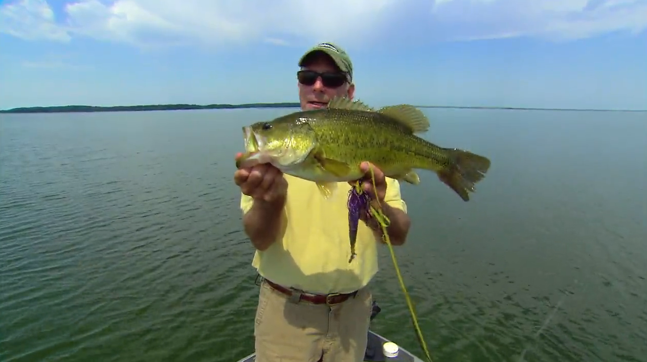 Largemouth Bass: Tricks of Our Trade