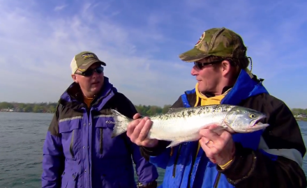Great Lakes waters host divers angling opportunities, including Coho Salmon.