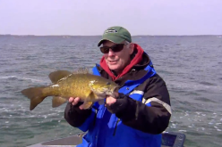 Ice-Out Smallmouths