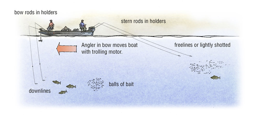 Striped Bass Fishing Techniques: Drifting Bait to Catch