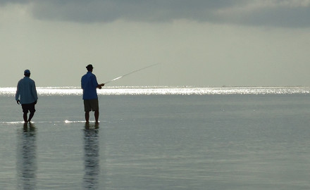 Top rod and reel setups for saltwater fishing.