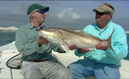 Some of the hottest action of the winter season is tracking down some southern schooling redfish