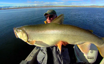 presentation perspectives on lake trout