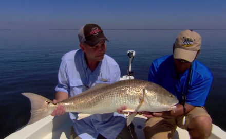 The In-Fisherman staff offers new seasonal strategies as they go technical and tactical for bayou redfish.